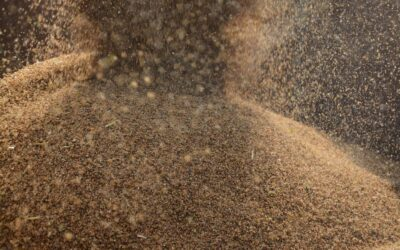 New partnership aims to launch global entrepreneurial comets within agritech