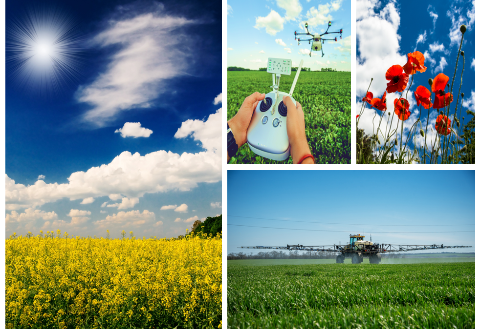 Can pesticides be sustainable?